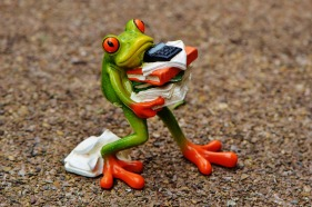 frog holding stack of books and papers